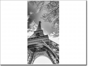 Preview: Türfotofolie mit Eiffelturm in Paris in schwarzweiss