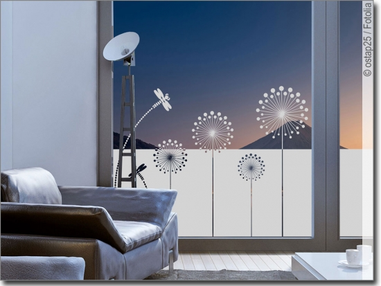 sichtschutzfolie moderne pusteblume fenster folie. Black Bedroom Furniture Sets. Home Design Ideas