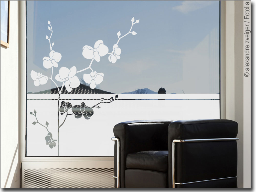 fensterfolie bezaubernde orchidee sichtschutzfolie. Black Bedroom Furniture Sets. Home Design Ideas