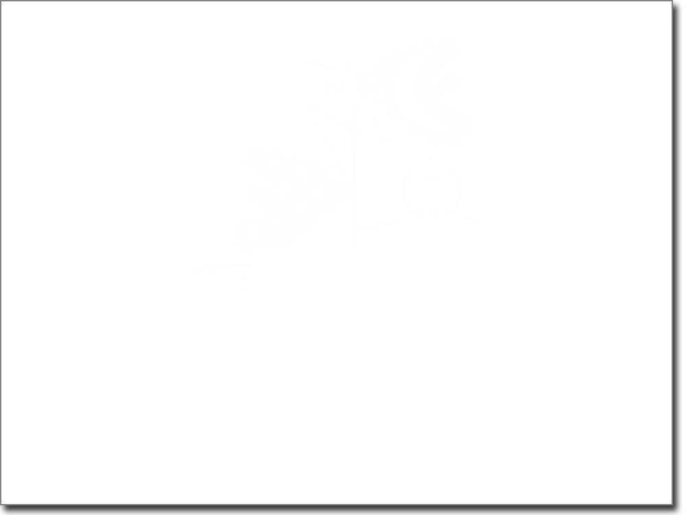 Selbstklebende Garderobe Baum Mit Eule